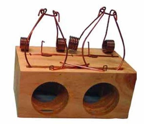 2 Holes small mouse trap